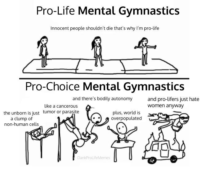 pro life gymnastics